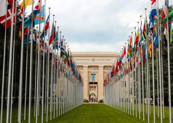 An image of flags outside United Nations